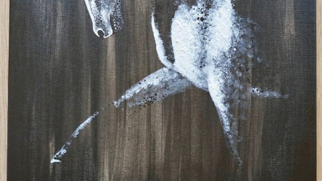 I spotted a gentle elegance by Laura Chaplin